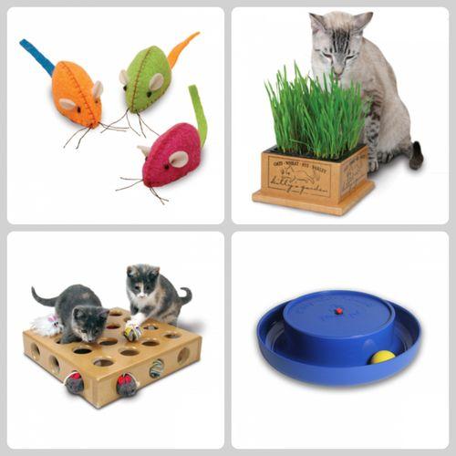 PicMonkey Collage toys