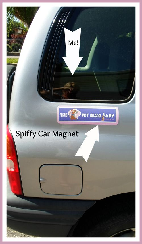 Magnet on car