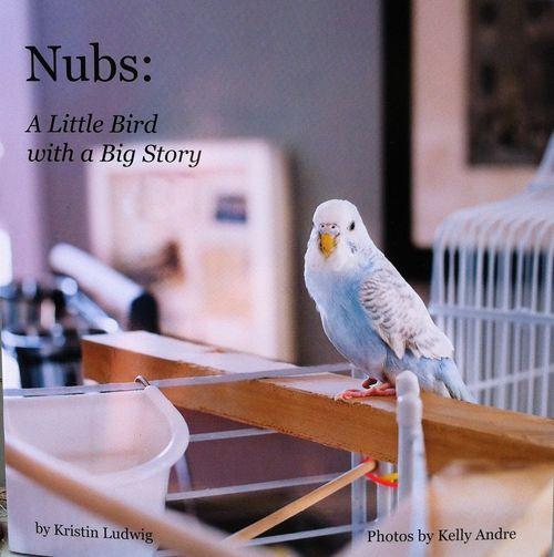 Nubsbook