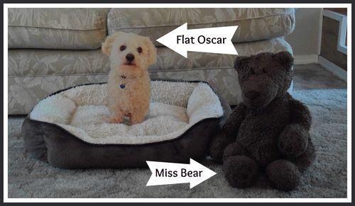 Oscar's pioneer bed