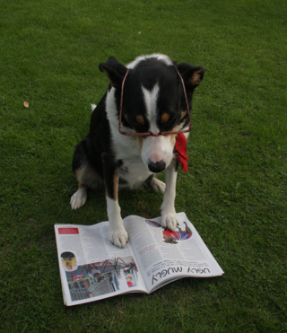 Nellie reading LWP magazine
