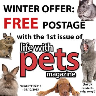 LWP mag - winter offer