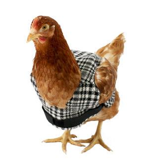 Tweed_chicken_jacket_black_white