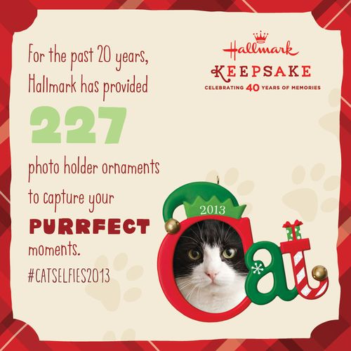 CAT-PHOTO-HOLDER-Hallmark-social-graphic-FINAL