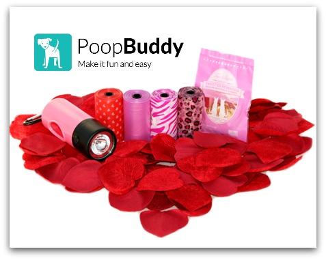 450xPoopBuddy-Valentines2