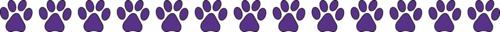 BdPaws_purple