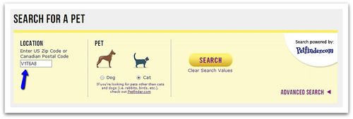 Search_for_a_petborder