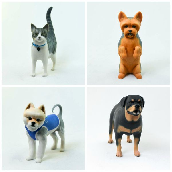 A 3d Model Of Your Pet The Ultimate Pet Lovers Keepsake The Pet