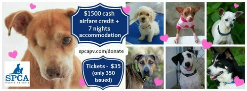 Spca collage