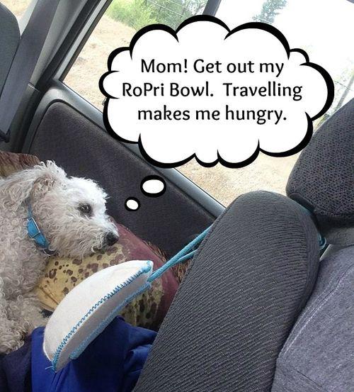 On the way to PG ropri