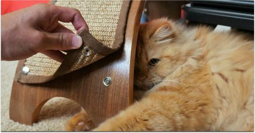 4.  QuickSnap Replaceable Cat Scratcher