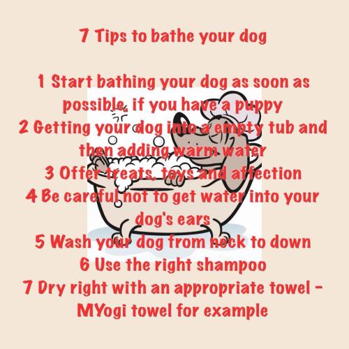 Myogi tips