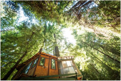 Santa Cruz Mountains 1