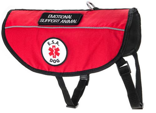 Emotional-Support-Dog-Vest-510x370