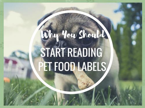 Dog food labels header