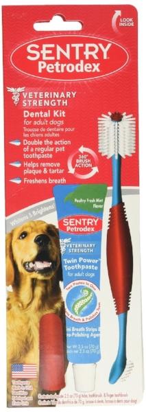 24 - dental kit