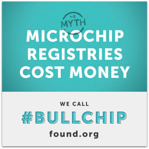 Bullchip2