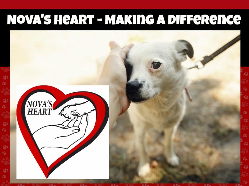 Novas heart banner
