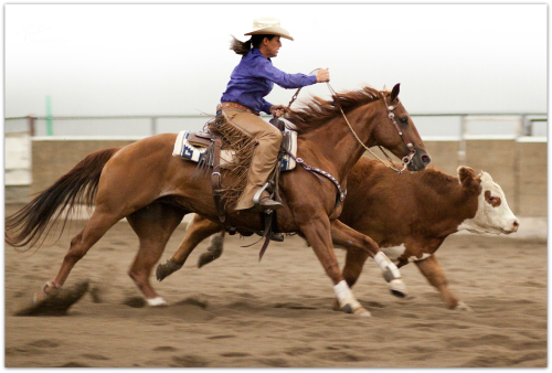 Keri Competes in Horse Show