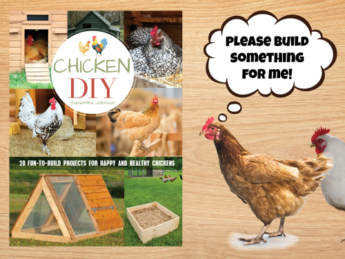 Chicken diy cover