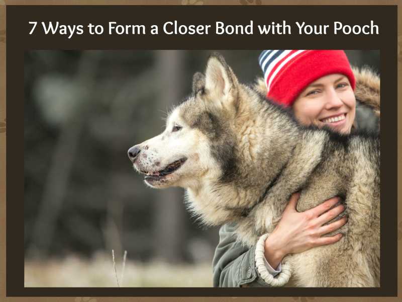 Bond with pooch cover