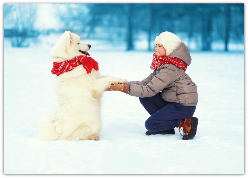 Bond with dog winter