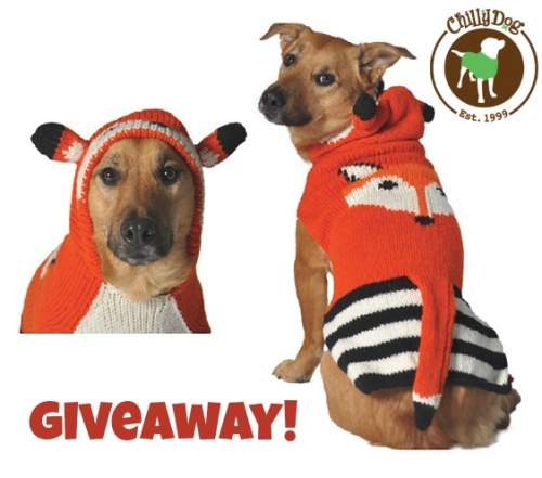 Fox sweater giveaway