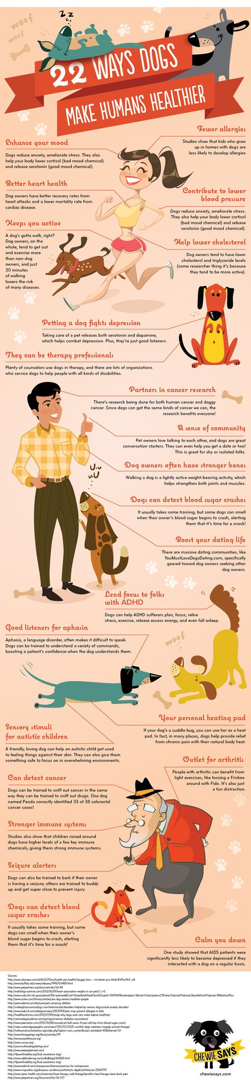 22 Ways Dogs Help Make Humans Healthier - Big (2)