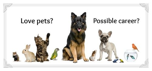 Variety of pets career