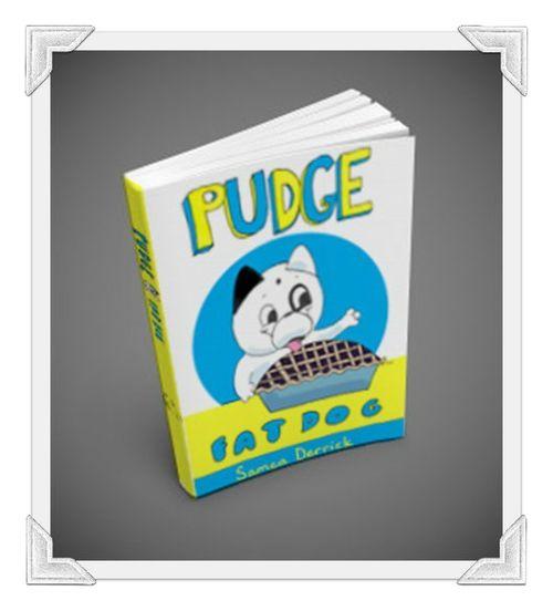Pudgebook