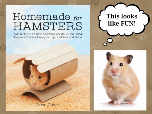 Homemade hamster header