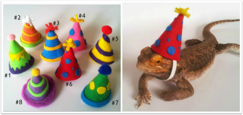 3004a81a986 People absolutely loved the idea of dressing up their reptiles and I had  almost sold out by the end of the weekend!