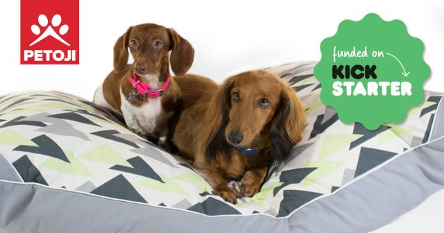 Petoji-hybern8-kickstarter-dachshunds-b