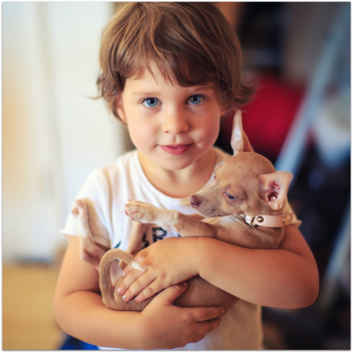 Girl with little dog
