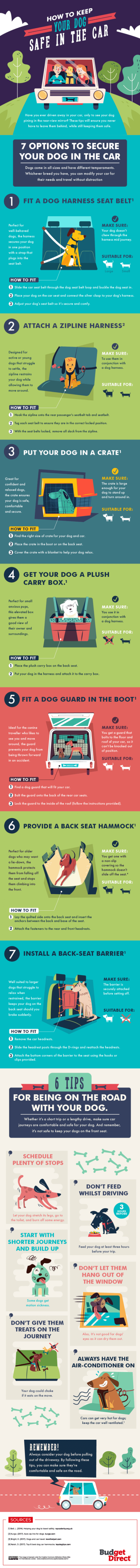 How-to-keep-dog-safe-in-the-car-535x5975
