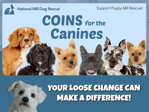 COINS FOR CANINES