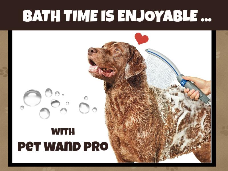 Pet wand banner