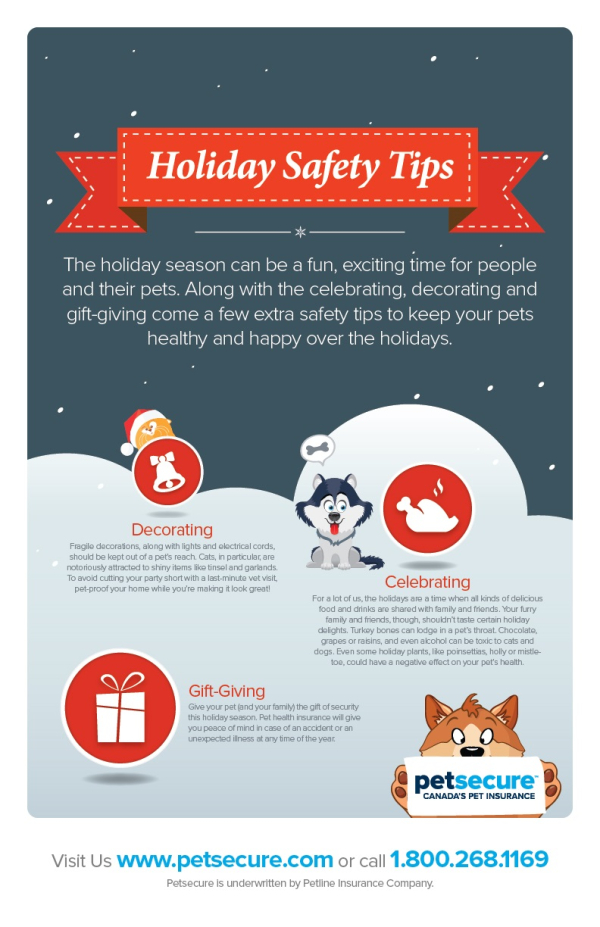Holiday Safety Tips For Your Pets