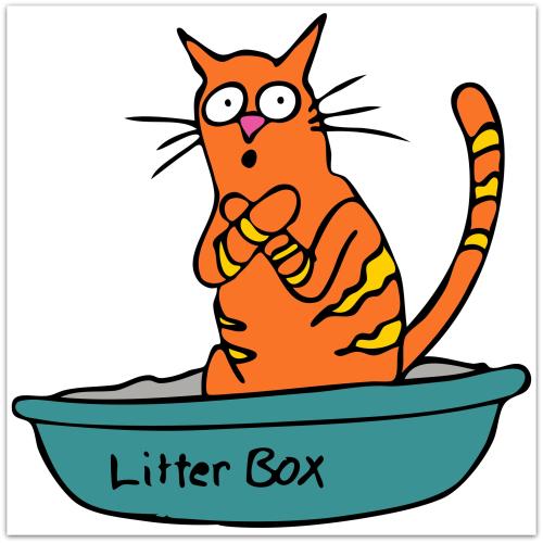 Cat in litter