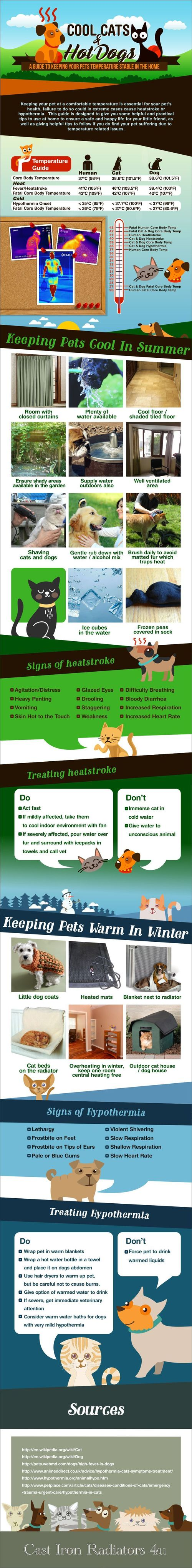 Infographic-cool-cats-and-hot-dogs
