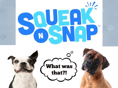 Squeak banner