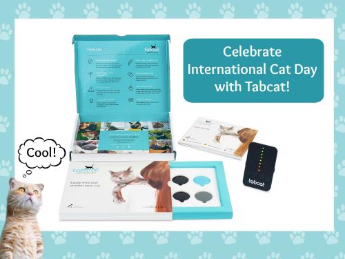 Tabcat header