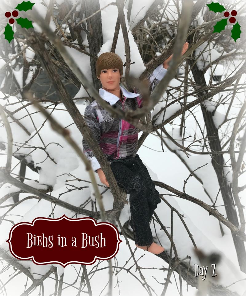 Biebs in a bush