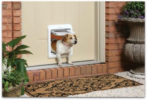 Petsmart-smartdoor-lifestyle