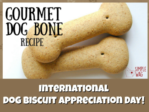 DOG BISCUIT BANNER