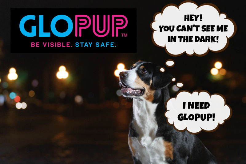 Glopup i want to be seen