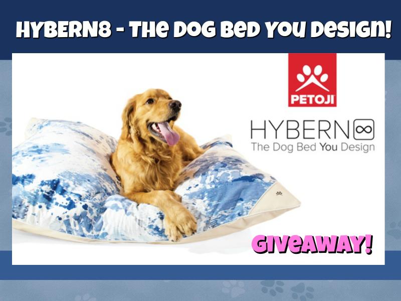 Hybern8 banner