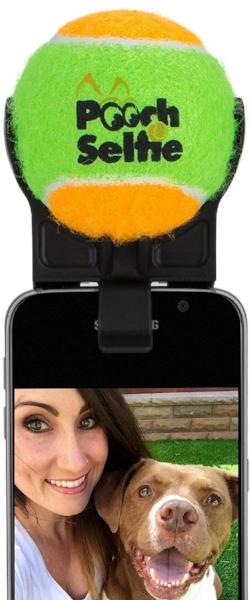 3 - pooch selfie