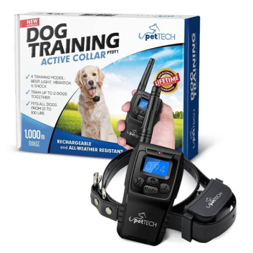 14 - training collar