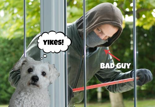 Robber at door